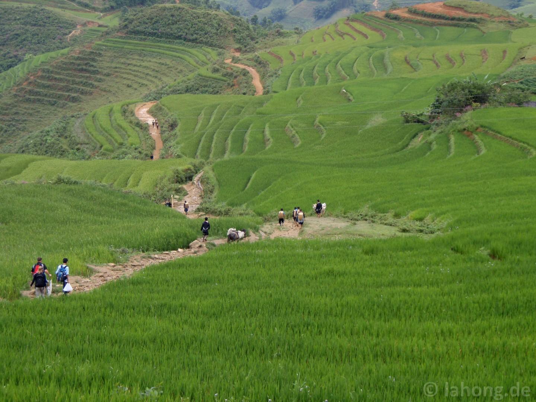 grenze china vietnam