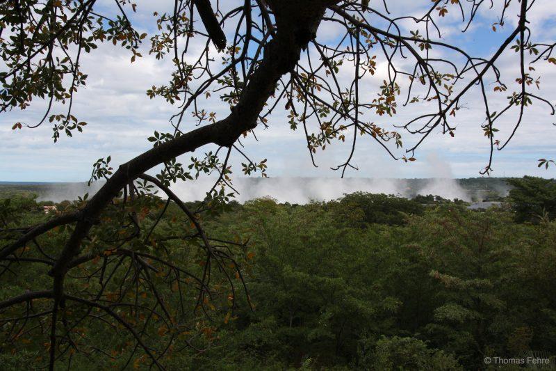 Blick auf die Victoria Falls vom Lookout Tree in Livingstone, Sambia